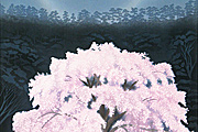 Higashiyama Kaii Luminous Cherry Blossoms (new wood block reprint)