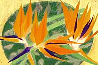 秋野不矩 南国の花