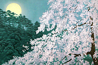 Higashiyama Kaii Cherry blossoms in the Evening