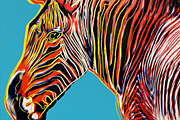 "Warhol Andy The kind on the verge of extinction""Grevy's Zebra"""