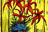 Buffet Bernard Flower of yellow backing