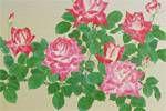 森田りえ子 薔薇