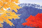 Higashiyama Kaii(new reprint) Autumn Colors(new reprint picture)