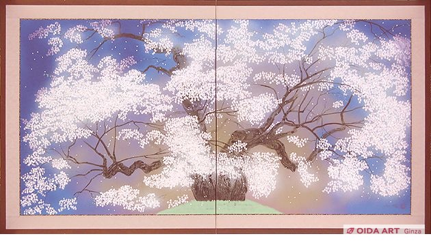 Nakajima Chinami Daigo cherry blossoms (two folding screen)